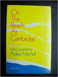 On the Beach at Cambridge