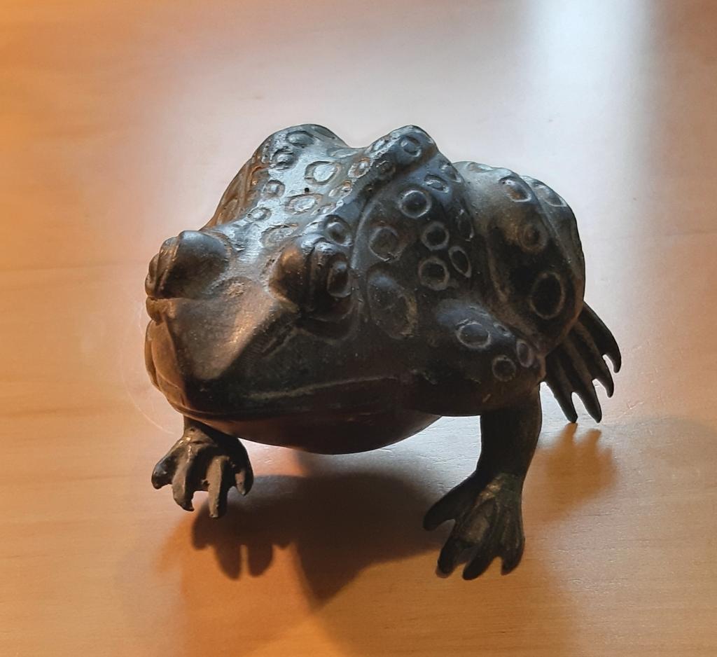 Vertigris Toad 1
